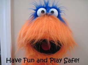 Have Fun and Play Safe